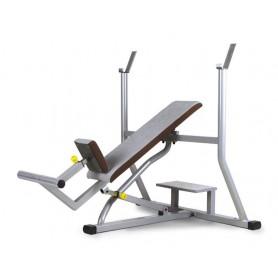 Teca Incline Weight Bench (FP420C)