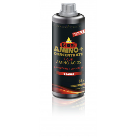 Inkospor X-Treme Amino+ Konzentrat 1L